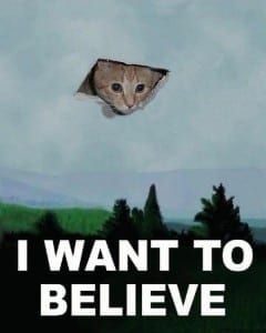 Ceiling_Cat__I_want_to_believe