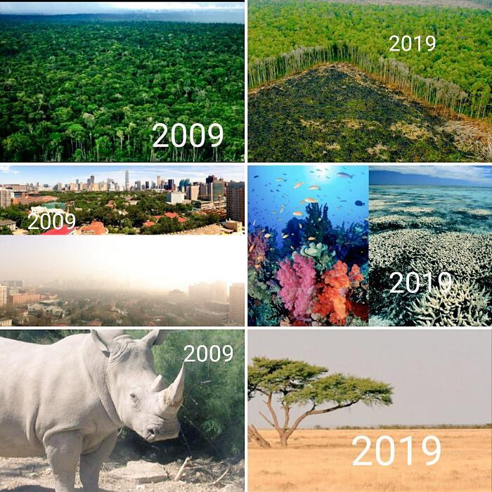 10 year challenge natura